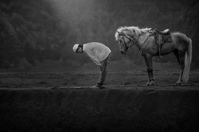 תחרות צילום סוני