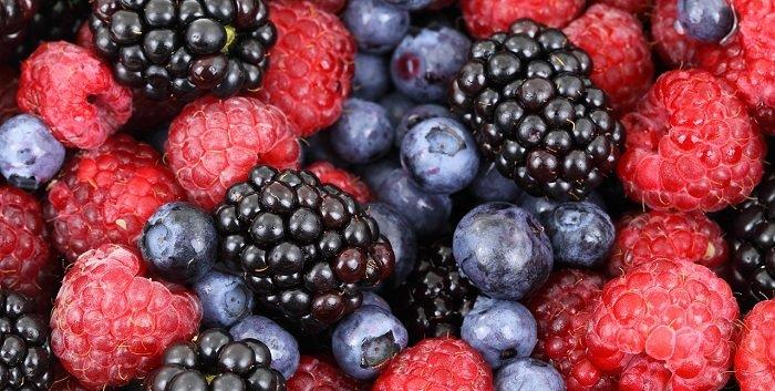 מזונות שמגבירים פוריות