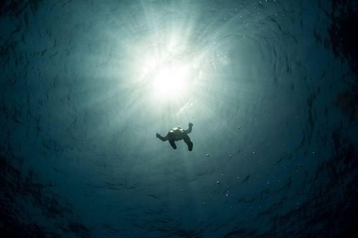 תחרות צילום המטיילים של נשיונל ג'יאוגרפיק