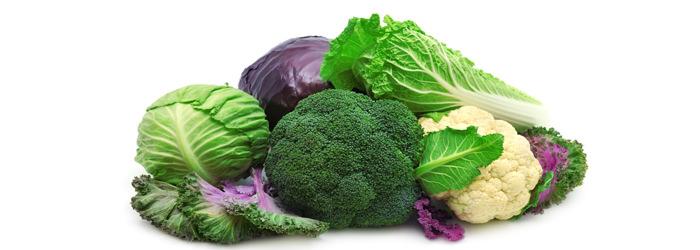 מאכלים המשפיעים על בלוטת התריס