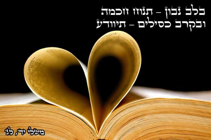 ציטוטים מהתנ'ך