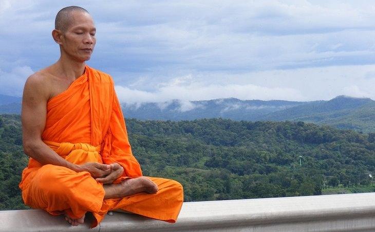 נזיר טיבטי על רקע נוף ירוק