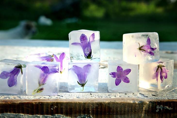 קרחוני פרחים