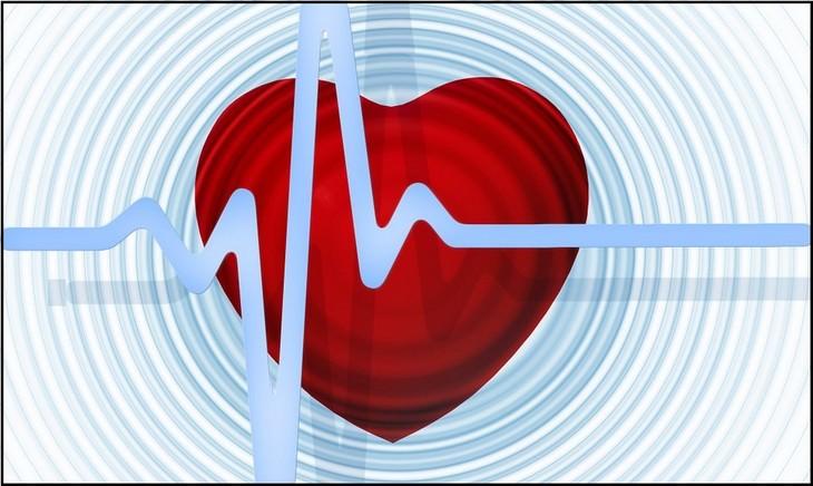 יתרונות הפחם הפעיל: איור של לב