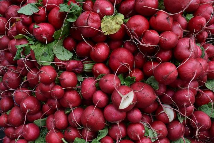 מאכלים לשיפור זרימת הדם: צנונים