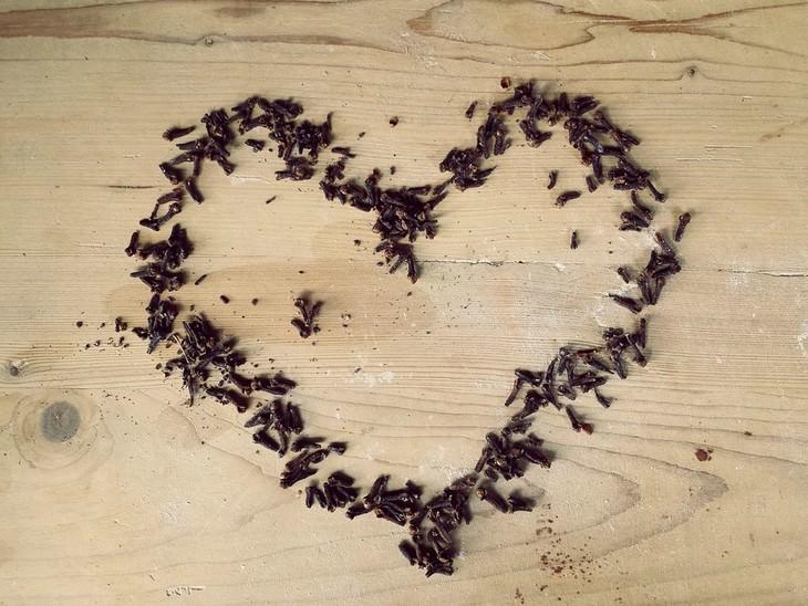 תבלין הציפורןף מסמרי ציפורן מסודרים בצורת לב