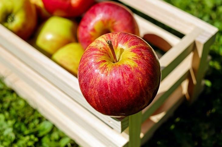 תמאכלים להלבנת שיניים: פוח אדום עומד על ארגז תפוחים