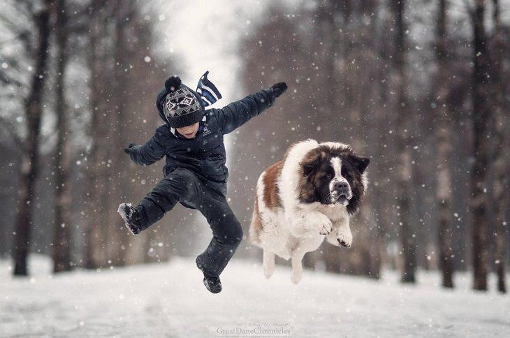 ילד וכלב קופצים באותו הזמן בשלג