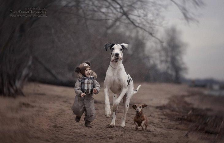 ילד, כלב גדול וכלב קטן רצים יחדיו