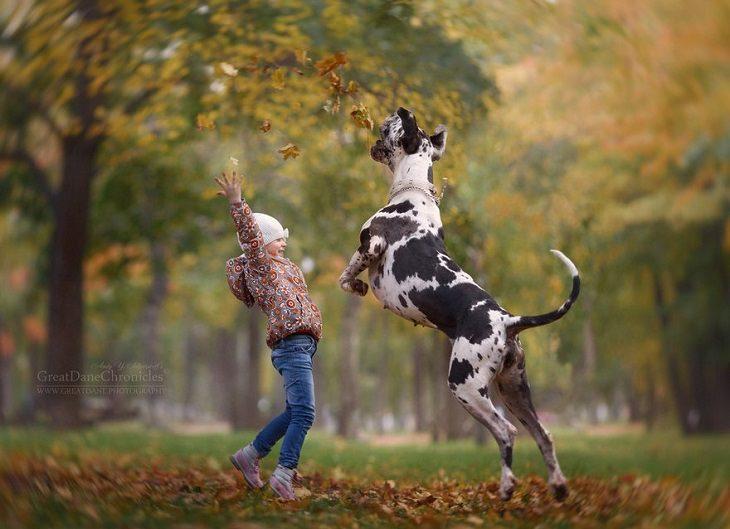 ילדה זורקת עלי שלכת באוויר וכלב מנסה לתפוס אותם