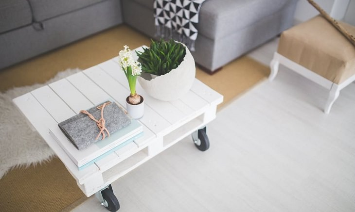 סלון עם ספה ושולחן ועליו עציצים וספרים