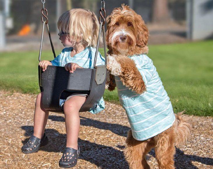 פעוט יושב על נדנדה וכלב דוחף אותה