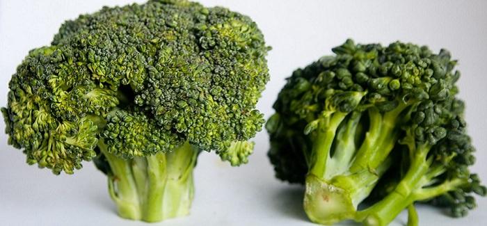 הפקת המירב מירקות
