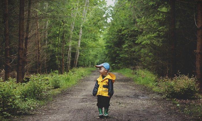 לגדל ילד חברותי: ילד עומד בשביל בתוך יער