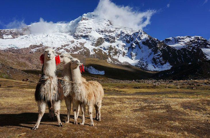 הרי הקשת בפרו והמסע אליהם