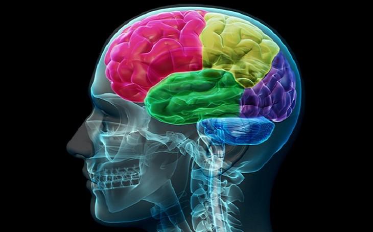 שיפור יכולות המוח