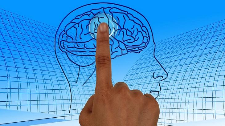מאכלים למניעת שבץ מוחי: איור של יד ומוח