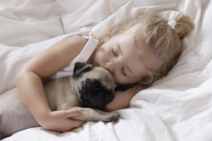 חמודים ישנוניים