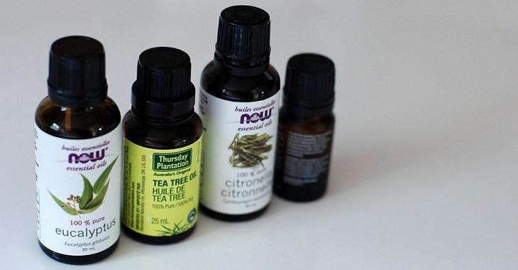 פתרונות טבעיים להקלה על אסתמה: בקבוקוני שמן אקליפטוס