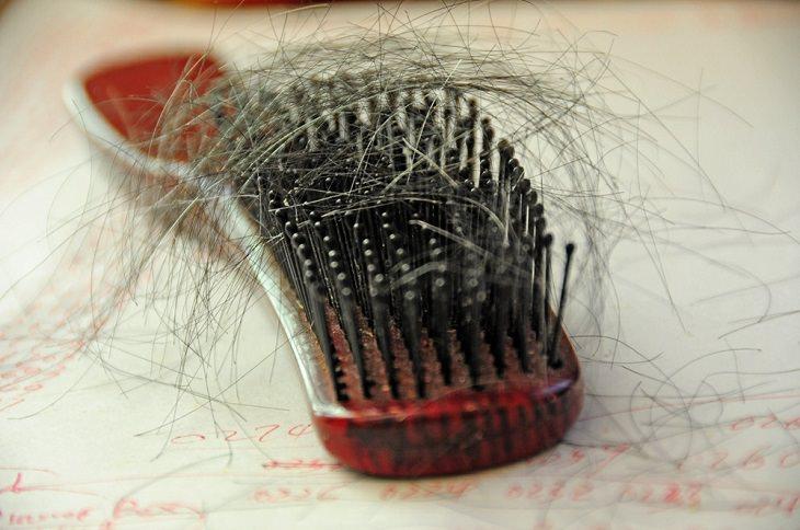 סימנים למחסור באבץ ומאכלים שמאזנים את רמתו: מסרק עם שיער