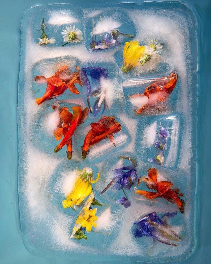 פרחים בצבע צהוב, כתום וסגול בבלוק של קרח