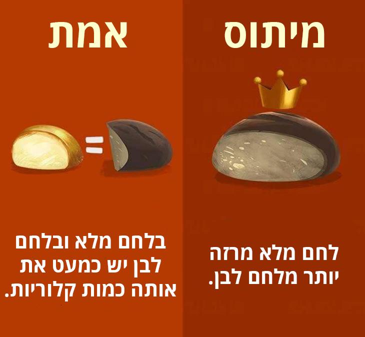 מיתוסים שגויים בנושא בריאות: בלחם לבן ולחם מלא יש כמעט את אותה כמות קלוריות