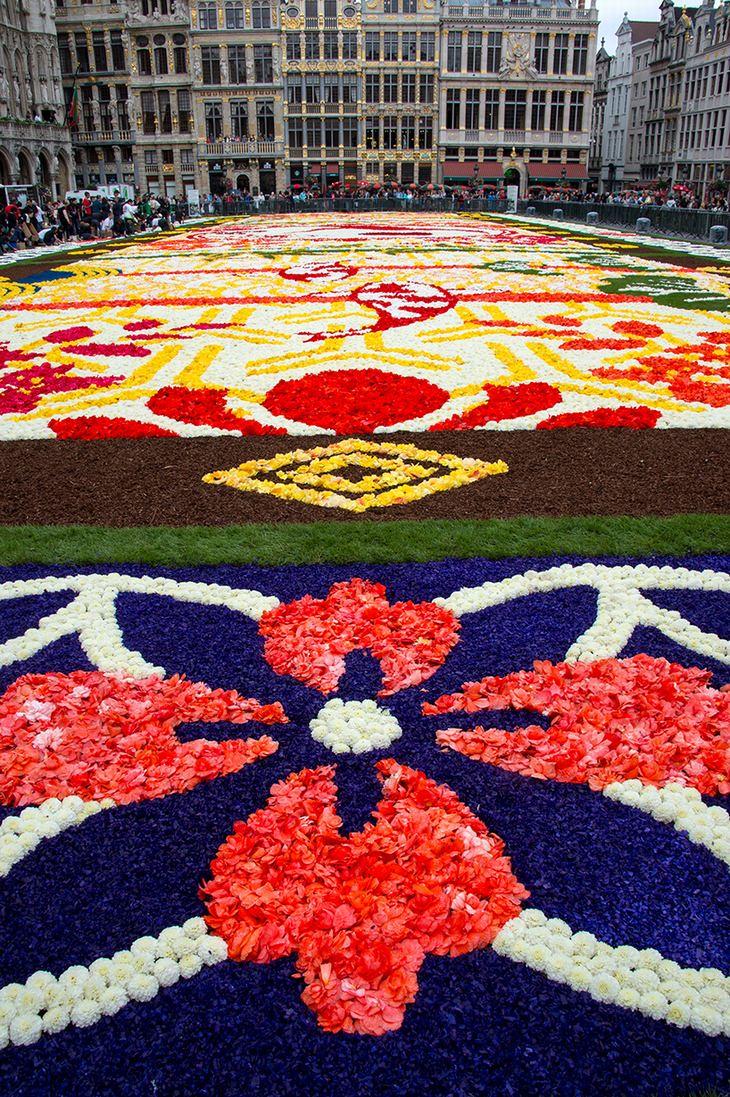 שטיח פרחים בבריסל
