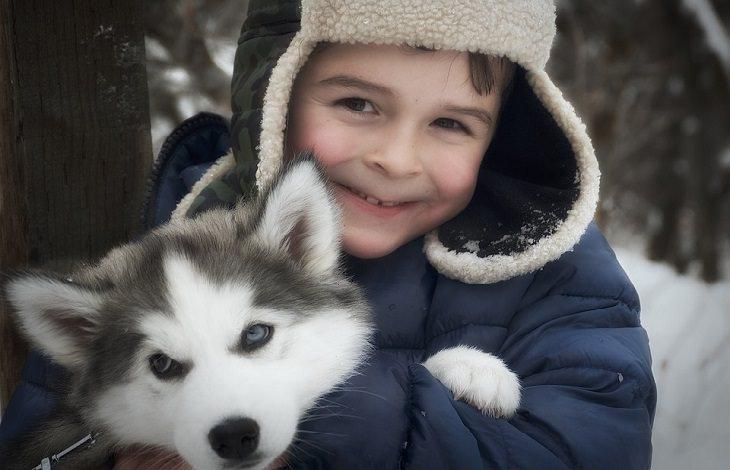 מכתב לסבתא בגן עדן: ילד עם כלב