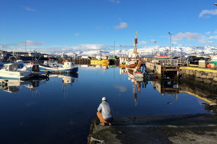מרינה מלאה בסירות דייג