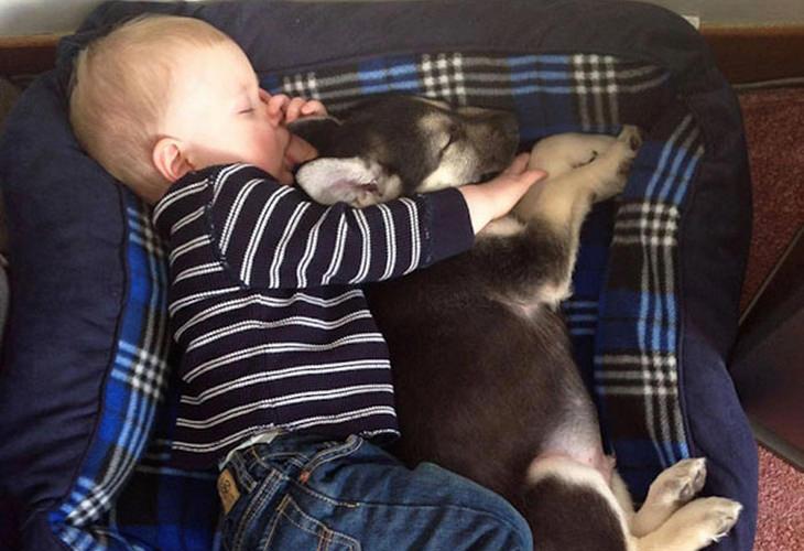 תינוק ישן כפיות עם גור כלבים