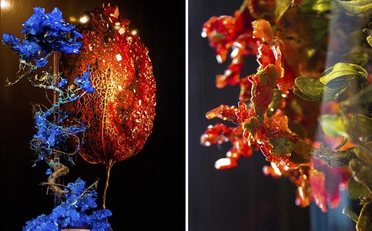 פרחי קריסטלים
