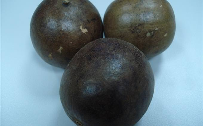 פרי הנזירים