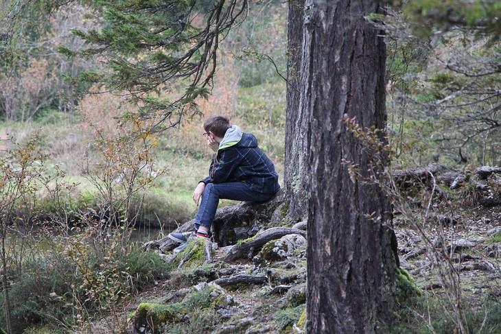 אדם יושב לבד ביער ומביט לצד