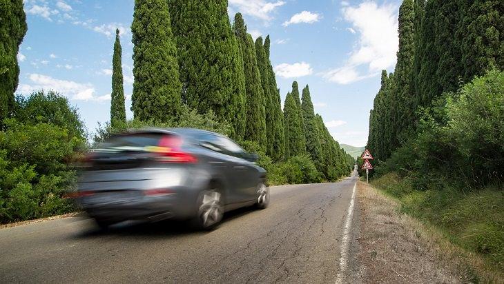 מכונית נוסעת על כביש באזור מוקף עצים
