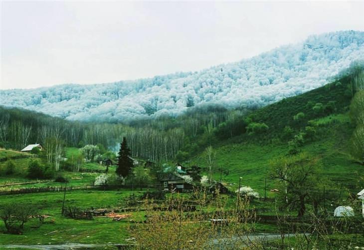 שלג בהרי אלטאי שבמרכז אסיה, אל מול העמק הירוק שתחתם
