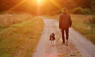 איש מטייל עם כלב