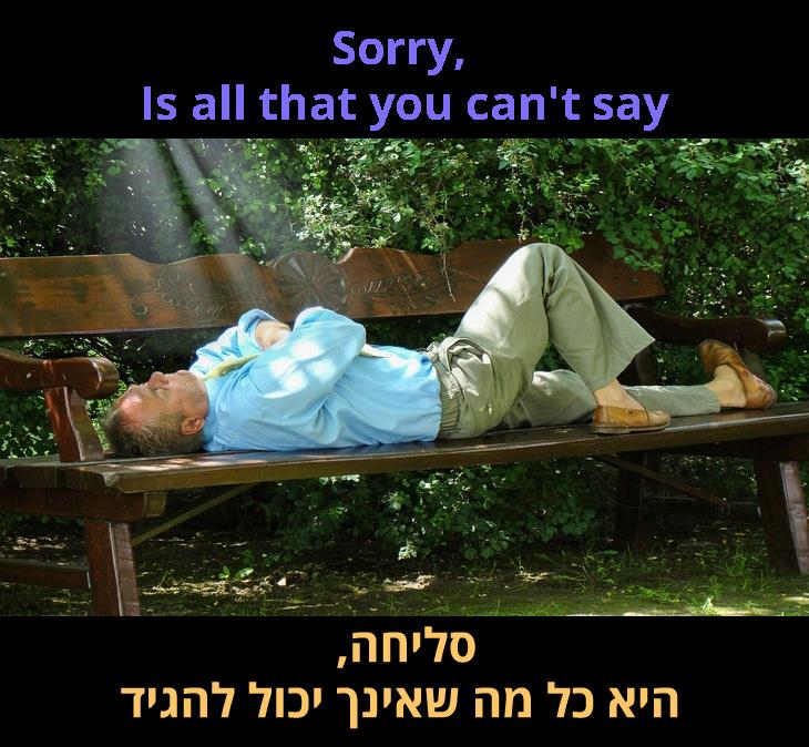מילות השיר: סליחה היא כל מה שאינך יכול להגיד