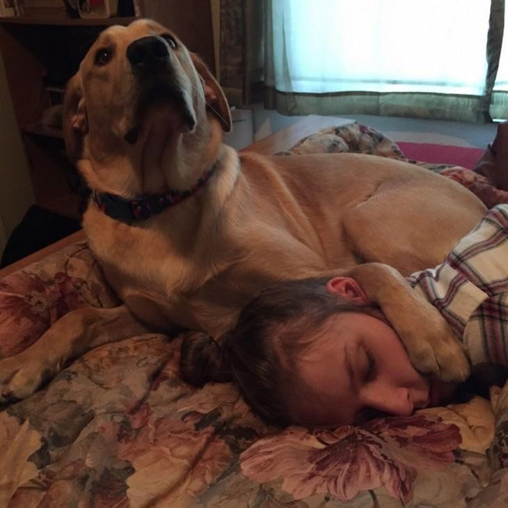 חיות מחמד שלא מוכנות לעזוב את הבעלים שלהן: כלב שם כפה על הבעלים שלו כשהיא ישנה