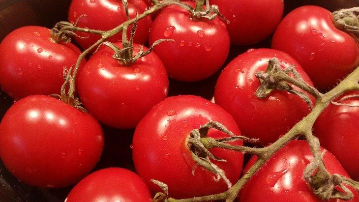 הזמן הנכון לאכילת מזונות מסוימים: אשכול עגבניות