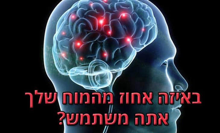 מבחני אישיות לבדיקת האינטליגנציה וכוח המוח: איור של מוח של אדם ובו חלקים מסומנים בצבע