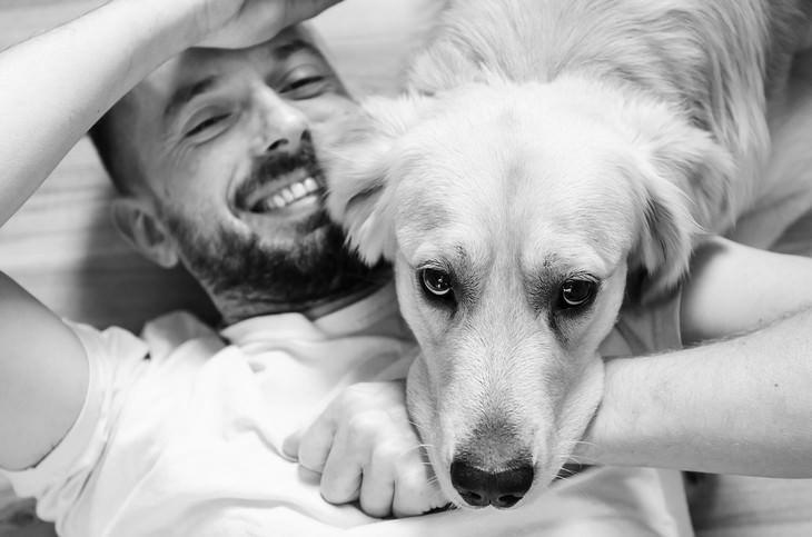 סימנים לכך שהכלב שלכם אוהב אתכם: כלב שם את ראשו על הבעלים המחויך שלו