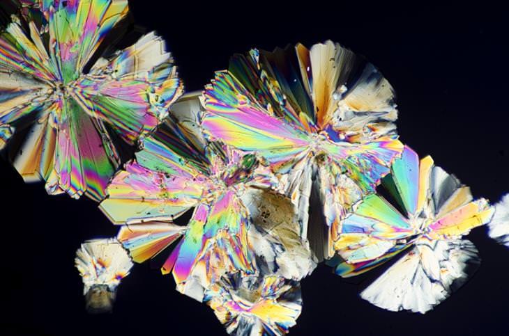 איך נראה מזון תחת עדשת המיקרוסקופ: גבישי סוכר