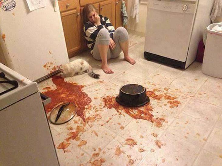 אסונות במטבח: אישה יושבת על הרצפה ובוכה על תבשיל שנשפך לה - החתול שלה אוכל אותו מהרצפה