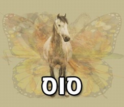 מה החיה הראשונה שתראו תגיד עליכם: סוס