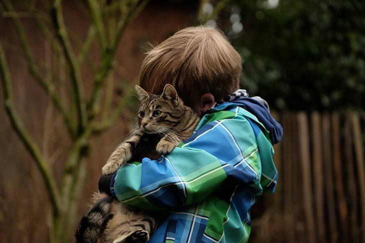 טעויות עם חיות המחמד: ילד מחבק חתול