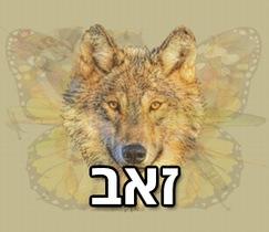 מה החיה הראשונה שתראו תגיד עליכם: זאב