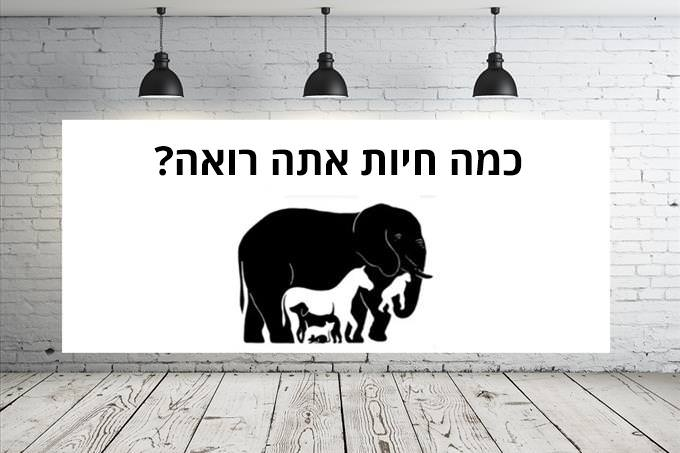 כמה חיות אתה רואה?