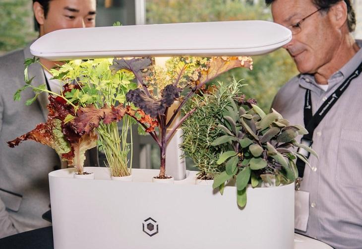 מטבח עתידני: AVA Byte - חממה קטנה במטבח