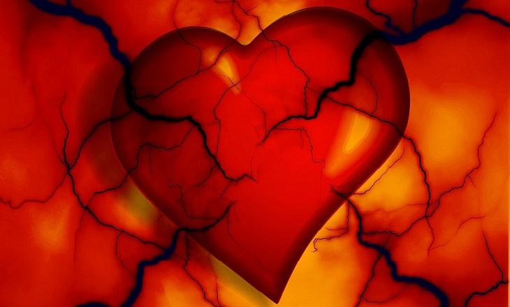 טיפול טבעי בלחץ דם: לב מצויר עם כלי דם בולטים