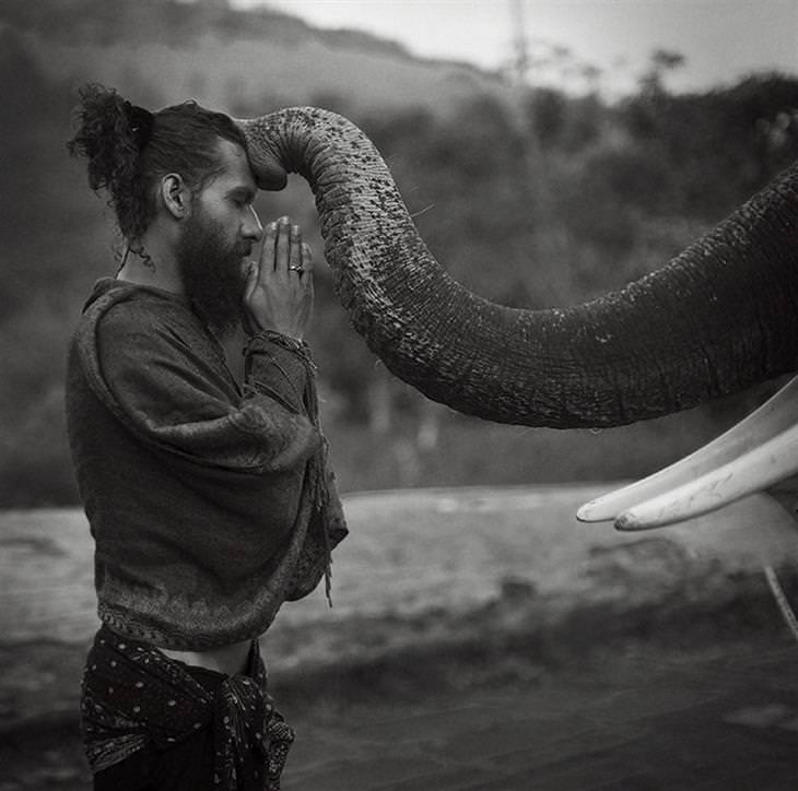 תמונות מדהימות: אדם מקבל נשיקה מפיל